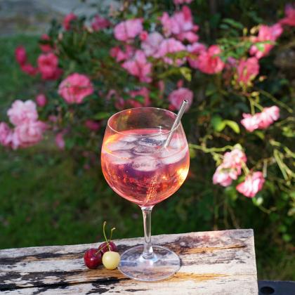 "Gin & Tonic Glass 630 ml ""Special Glasses"", Spiegelau"